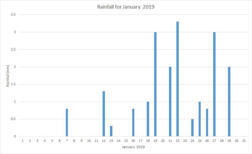 Rainfall January 2019
