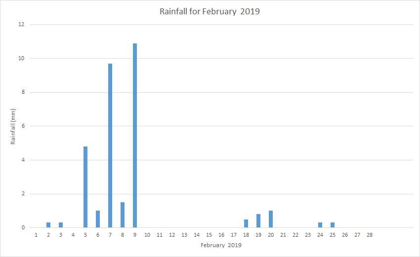 Rainfall February 2019