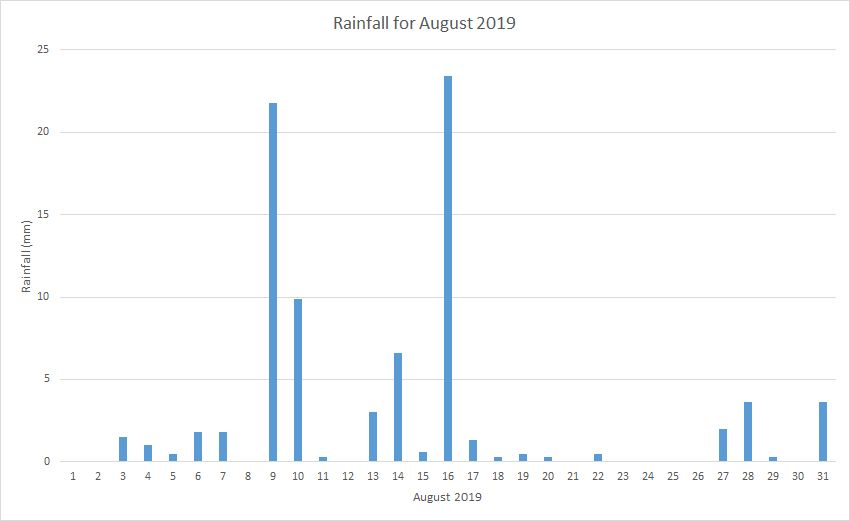 Rainfall August 2019