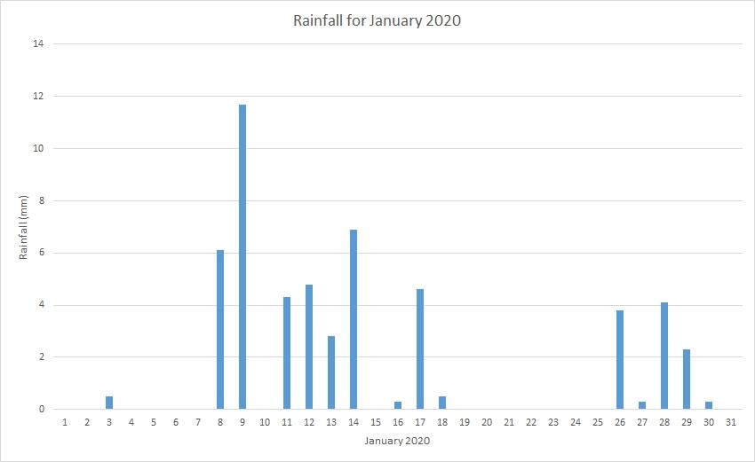 Rainfall January 2020