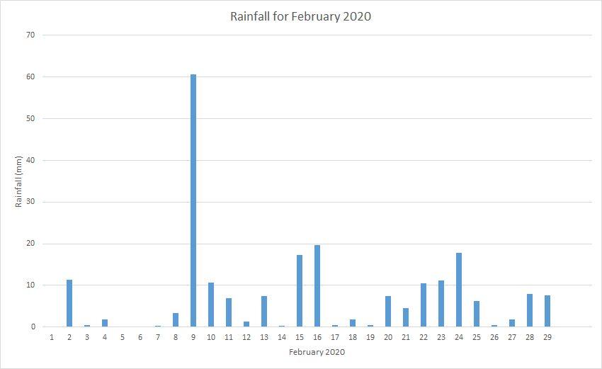 Rainfall February 2020
