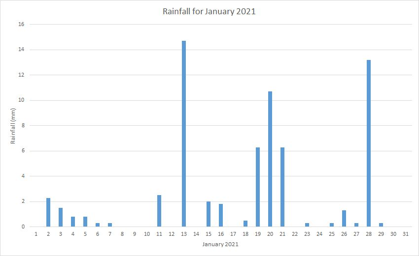 Rainfall January 2021
