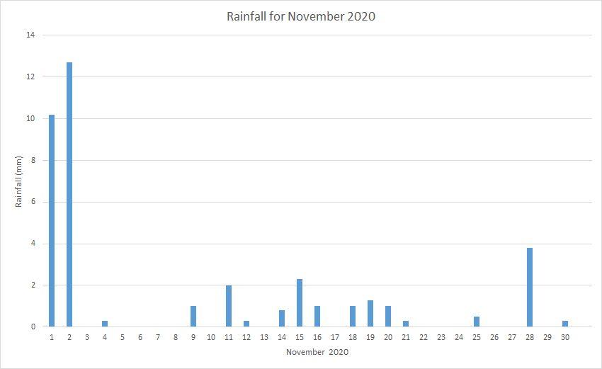 Rainfall November 2020