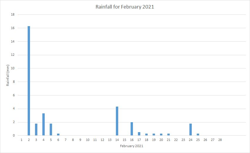 Rainfall February 2021